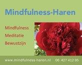 000-seq-mindfulness_haren.jpg